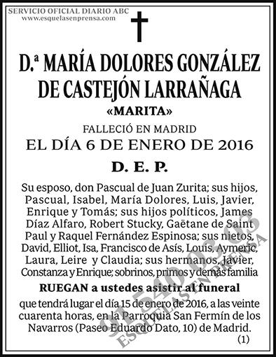 María Dolores González de Castejón Larrañaga